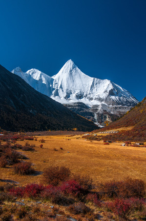Autumn scenery in Yading Nature Reserve, Daocheng county, Ganzi Tibetan Autonomous Prefecture, Sichuan province of China. The holy peak Yangmaiyong (Jampelyang) can been seen in the background