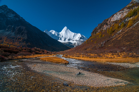 Autumn scenery in Yading Nature Reserve, Daocheng county, Ganzi Tibetan Autonomous Prefecture, Sichuan province of China. The holy peak Yangmaiyong (Jampelyang) can been seen in the background Stok Fotoğraf - 111359319