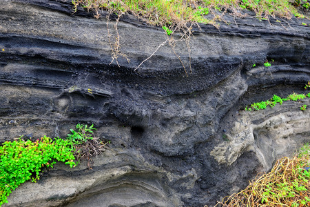Volcanic deposits. south korea, jeju island Фото со стока