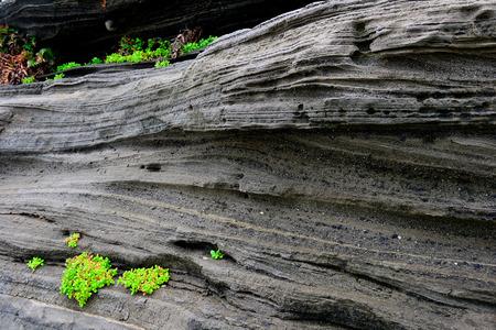 Volcanic deposits. south korea, jeju island Фото со стока - 38708441