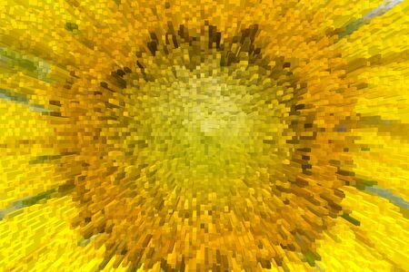 implode: close-up of the sunflower with extrude effect