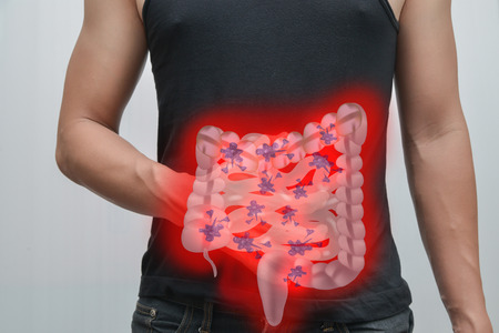angularis: Man pain in the intestine And intestinal picture.The concept is easy to understand information about the disease.