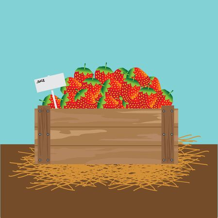 wood crate: strawberry in a wooden crate Vector illustration Illustration