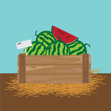 watermelon in a wooden crate Vector illustration. Illustration