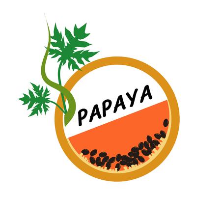 Papaya Fruit icons flat style, Vector Illustration on white background. Illustration