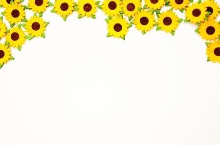 sunflower edge photo