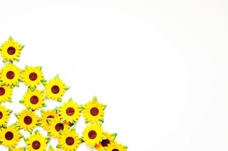 paper sunflower edge photo