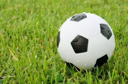 Soccer Ball On The Green Field Stock Photo - 9447966
