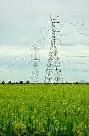 High-voltage towers on the rice field in Thailand