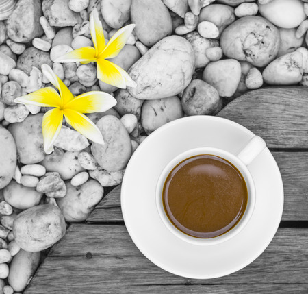 coffee hour: A White Cup of Coffee