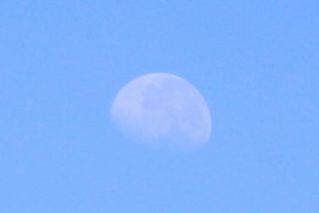 Lunar at dawn