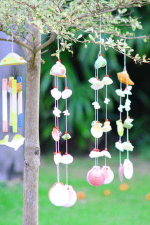 Seashells  mobile hang on tree in garden photo