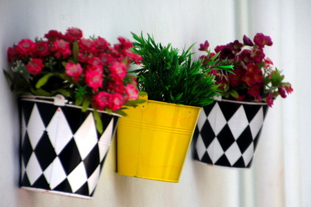 Flower pots hanging on the wall  photo
