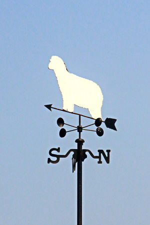 gusty: Weathercock with  white ship or Kazami-dori on  roof