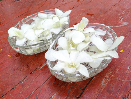 relent: White orchid  in glass bowl on wooden table