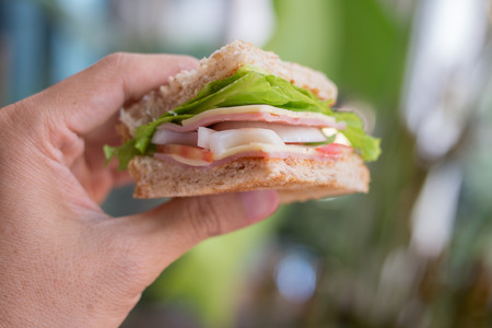 A peice of Ham Cheese sandwich ready to eat. Stock Photo