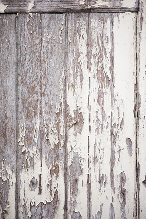 wood rustic texture with pelling paint surface.