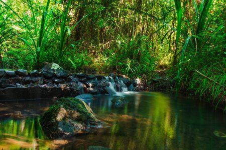 Bellissimo ruscello di montagna scorre attraverso abbondanti foreste nella foresta pluviale di Koh yao yai, Phang Nga, Thailandia