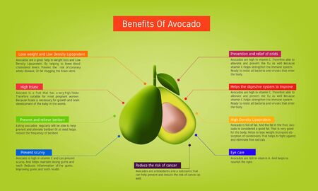 nutritional benefits of Avocado Infographic about nutrients in Avocado Fruit and agriculture vector illustration nutrition and healthy food Vector Illustration