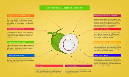 nutritional benefits of Coconut Infographic about nutrients in Avocado Fruit and agriculture vector illustration nutrition and healthy food Vector Illustration