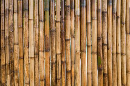 bambou: Bâton de bambou clôture fond Banque d'images