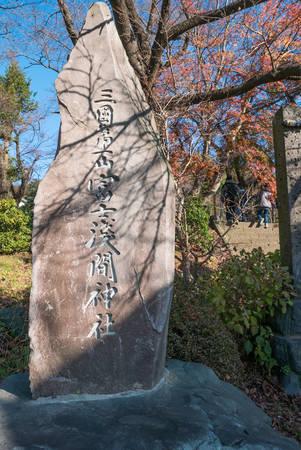 chureito: Around Chureito Pagoda stairs during autumn