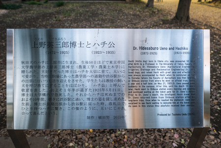 faculty: Tokyo - Dec 4, 2015 - The story of Hachiko and his owner is built and located at the faculty of Agriculture at Todai university where his owner worked as professor during being alive Editorial