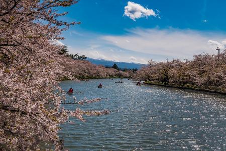 Cherry blossoms at the Hirosaki Castle Park in Hirosaki, Aomori, Japan Stock Photo
