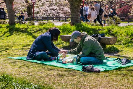Aomori, Japan - April 30, 2016: Tourist at the Hirosaki Castle Park in Hirosaki, Aomori, Japan
