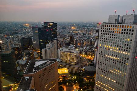 metropolitan: Japan cityscape at Metropolitan Government Building in Shinjuku, Tokyo,