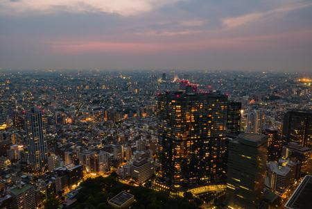 Japan cityscape at Metropolitan Government Building in Shinjuku, Tokyo,