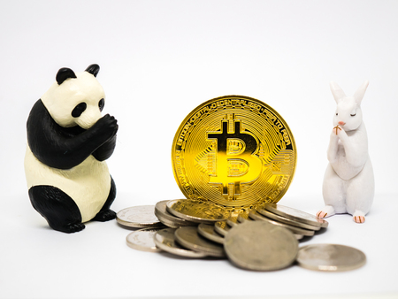 Rabbit and panda figures praying for bitcoin crypto currency.