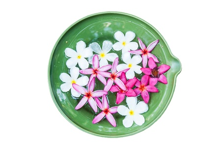 Colorful Plumeria flowers a ceramic basin