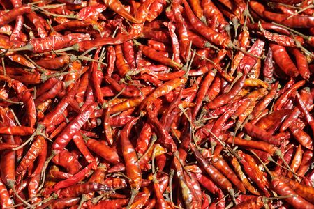 Dry Red Chillies photo