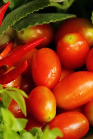 小さなトマト