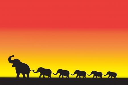 象の家族徒歩日没