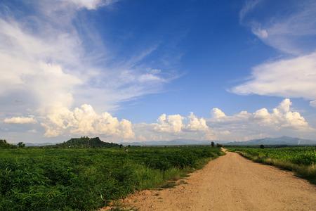 国の道路 写真素材