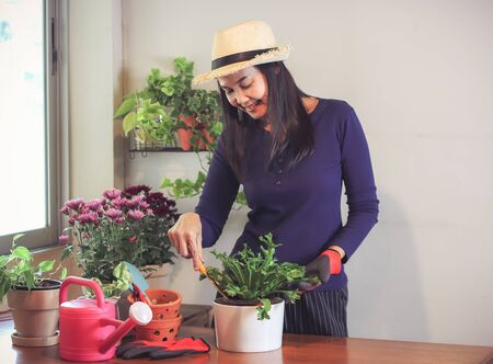 Beautiful Asian woman  taking care of plant at wooden table indoor , smiling happily with plant pot.Gadening concept. Stock fotó