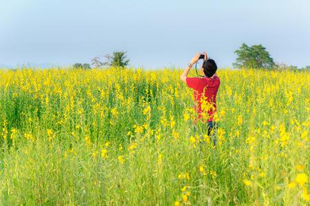 CHIANG RAI, THAILAND-November 25 : Unidentified Traveller take a photo in sunn hemp field on November 25,2014 in Chiang Rai Thailand.