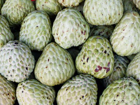 sweetsop: custard apple
