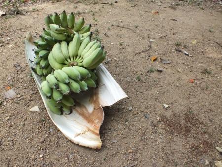 nam: banana nam wa