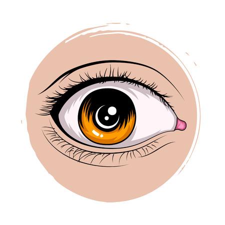 female eyes: Set of female eyes. Vector illustration for health glamour design. Eye icon