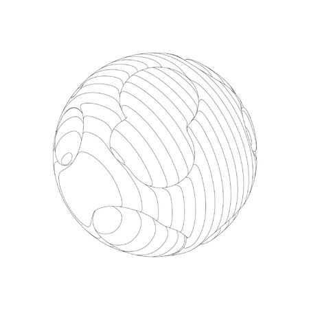 Wireframe mesh objects. Network line, HUD design sphere. Abstract 3d object. Isolated on white background 版權商用圖片 - 132015984