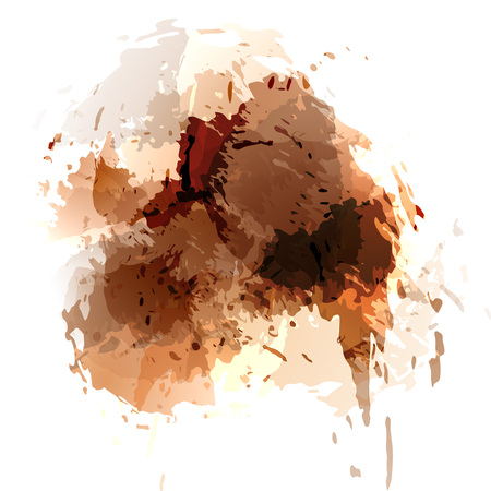 painted the cover illustration: Browh contemporary splatter background template abstract card layout design. Vector illustration