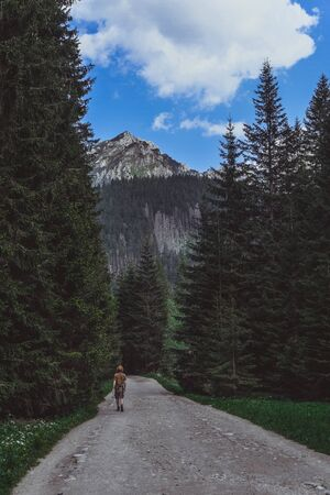 Man walking on green forest road. Looking on road, mountains and man