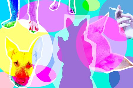 Contemporary art collage with silhouette of dog. Illustration of smoking dog on bright background Imagens