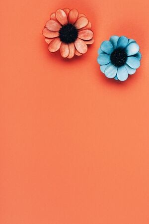Orange and blue dried flowers on a peach background with place for text.
