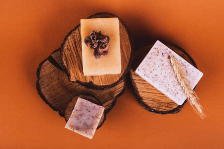 Natural bar of soaps on wood cuts with monstera sheet - beauty treatment on colored background Stok Fotoğraf