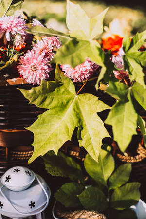 Autumn leaves and flowers in a wicker straw basket with a white lantern near