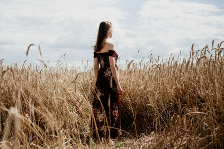 Beautiful young woman in red dress stands in a wheat field Stok Fotoğraf